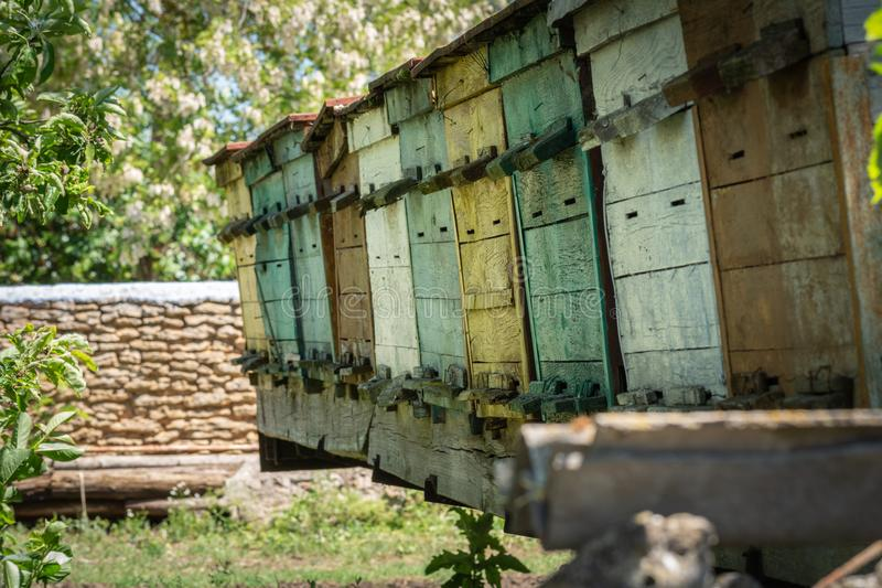 Homemade wooden hives royalty free stock photography