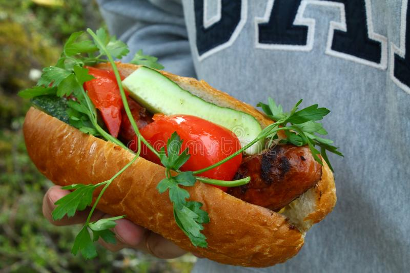 Homemade Wrapped Hot Dogs with tomatoes and cucumber stock photos