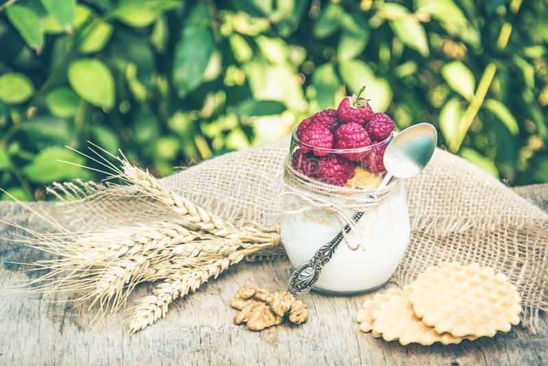 Homemade yogurt with raspberries, cereals and waffles. Useful breakfast. Summer breakfast in the garden. royalty free stock photography