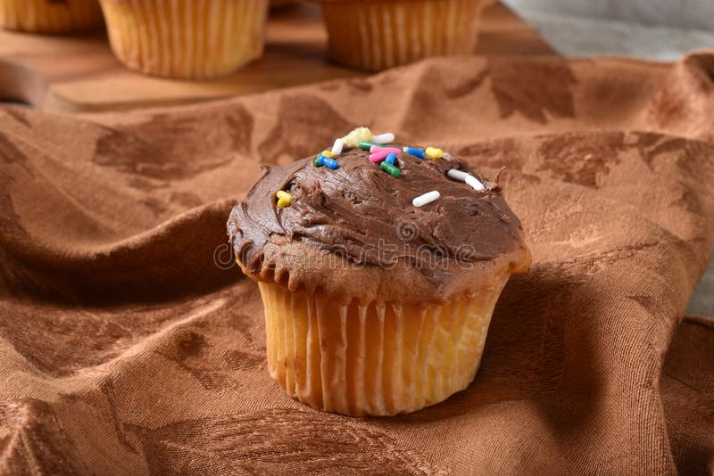 Homemae cupcake with chocolate frosting stock photo