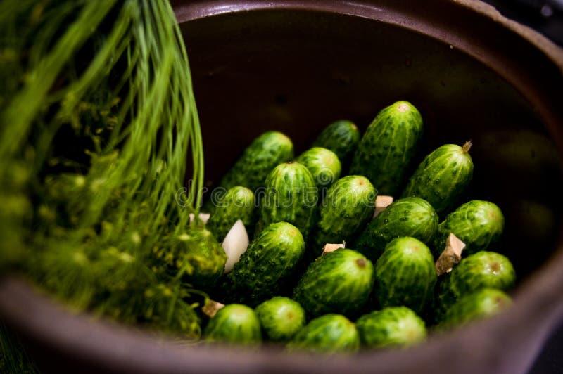 Homemage todavía conservó en vinagre la foto de la comida de la vida de los pepinos fotografía de archivo libre de regalías