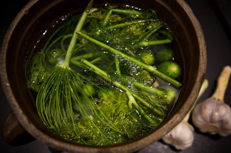 Homemage todavía conservó en vinagre la foto de la comida de la vida de los pepinos fotos de archivo libres de regalías
