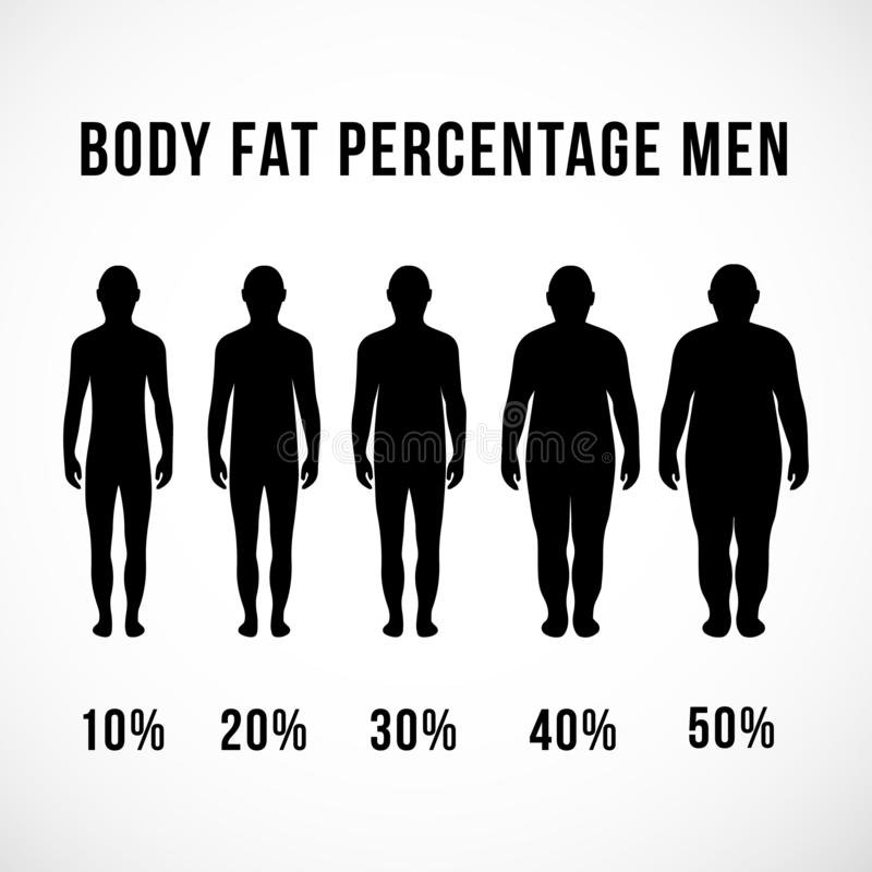 Homens da porcentagem da gordura corporal ilustração royalty free