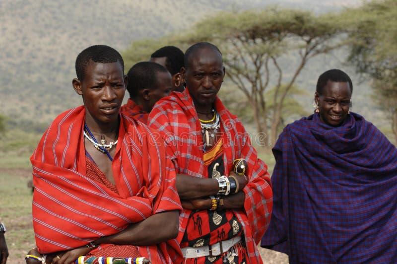 Homens de um maasai do retrato do grupo. fotos de stock