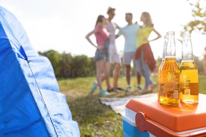 Homens despreocupados e mulheres que relaxam nas férias foto de stock royalty free