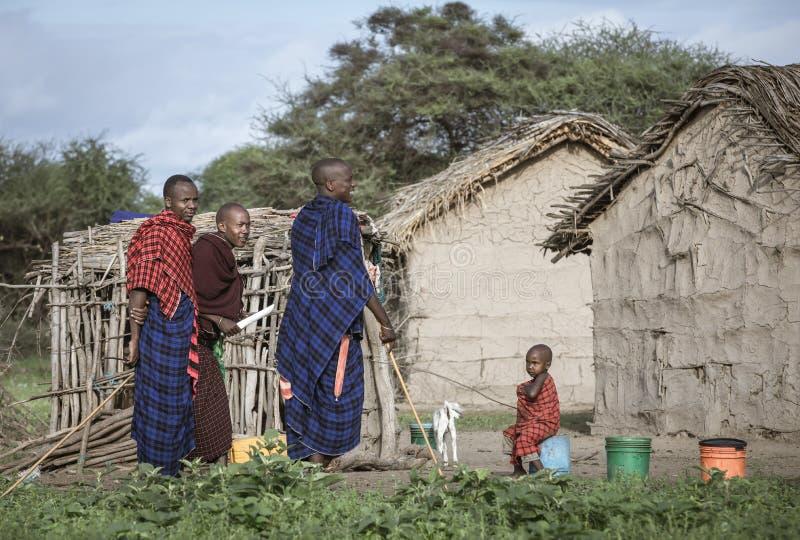 homens do maasai que socializam fora de suas casas fotografia de stock