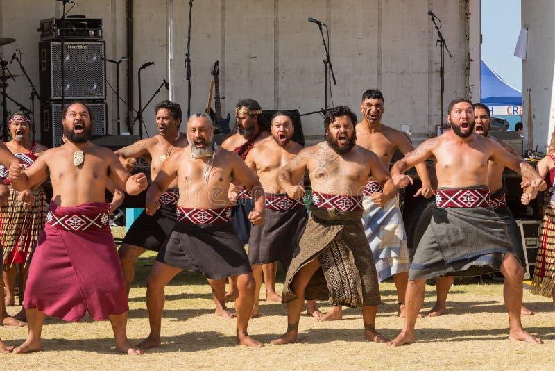Homens maori que executam um haka, Nova Zelândia fotos de stock