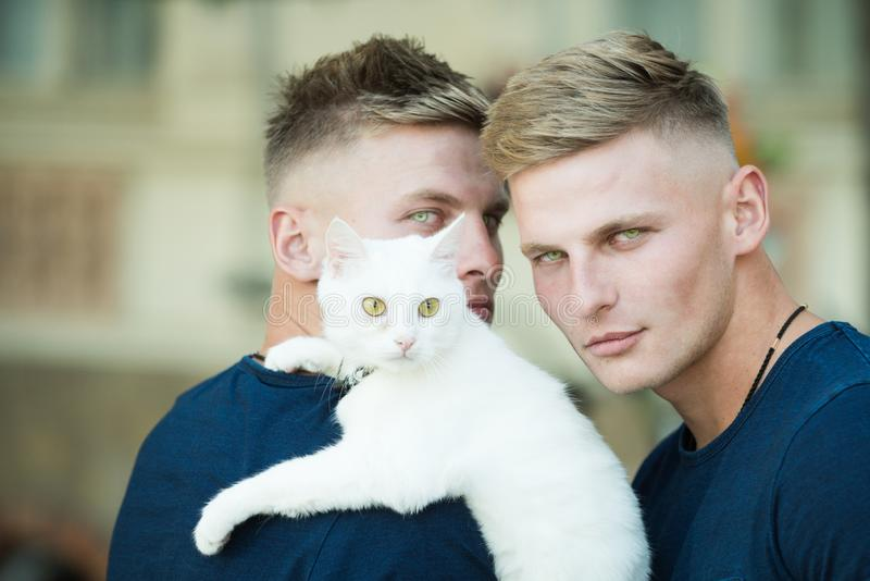 Homens musculares com gato bonito Proprietários felizes do gato na caminhada com animal de estimação Os homens dos gêmeos guarda imagem de stock royalty free