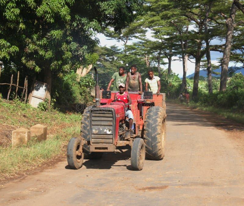 Homens no trabalho em Madagáscar fotografia de stock royalty free