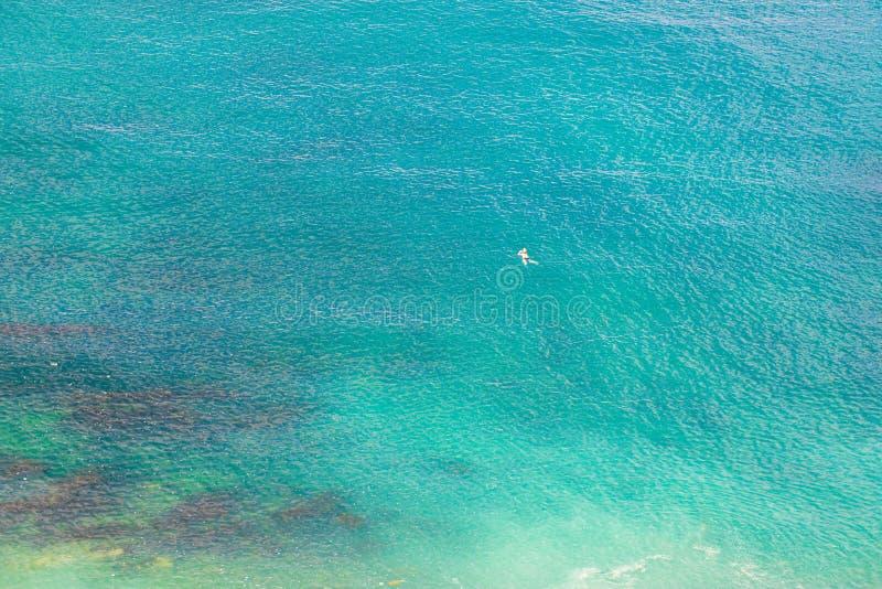 Homens novos que nadam no mar azul fotos de stock