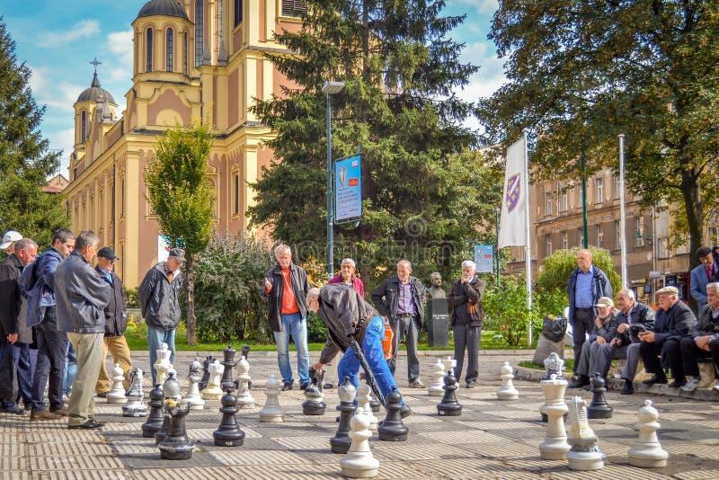 Homens que jogam a xadrez gigante, Sarajevo, Bósnia imagem de stock