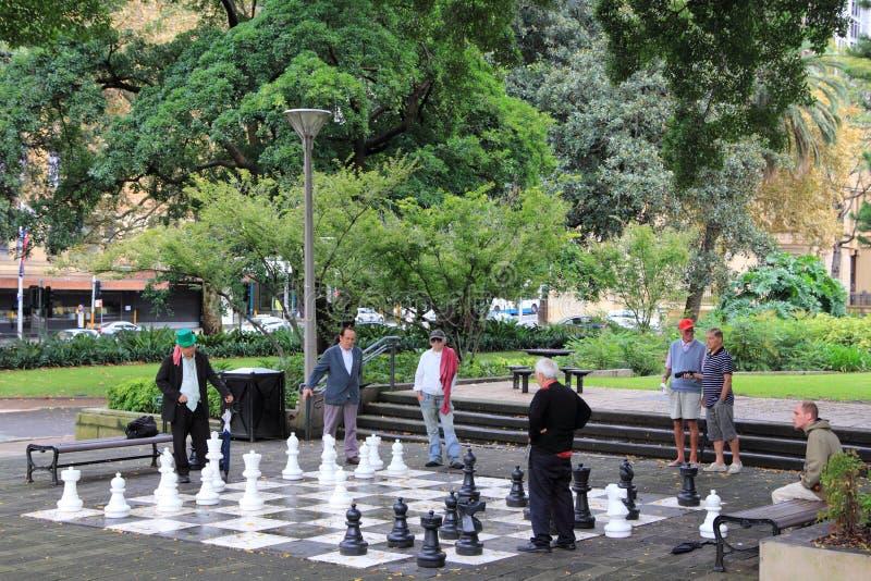 Homens que jogam a xadrez no parque foto de stock royalty free