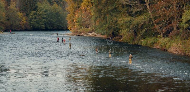 Homens que pescam no rio imagem de stock