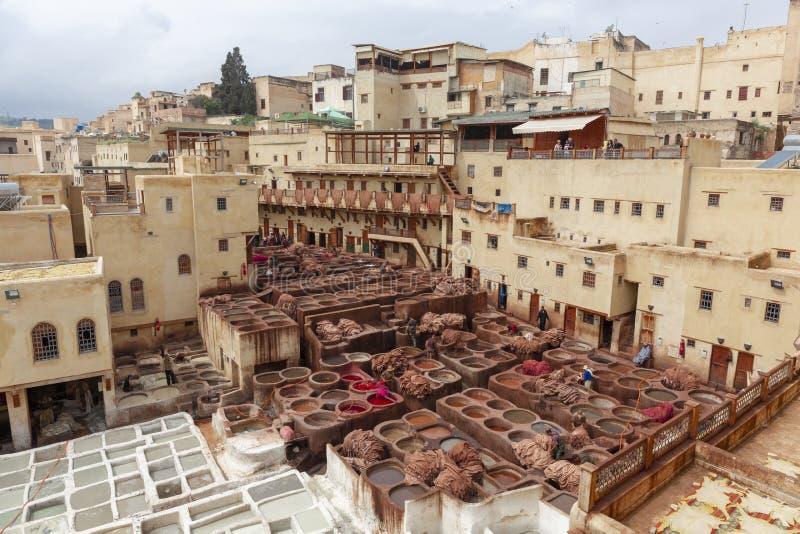 Homens que trabalham duramente no souk do curtume de Chouara no fez, Marrocos Ta fotografia de stock