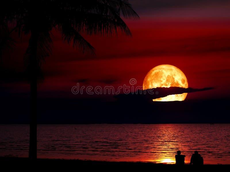 homens super do coco da silhueta da lua do sangue azul que olham a lua imagem de stock