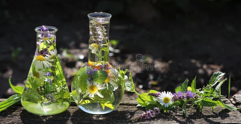 Homeopathie en het koken met kruiden stock foto's