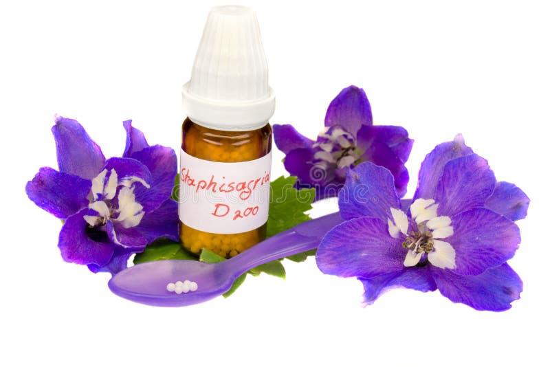 Download Homeopathy stock image. Image of doctor, globule, leaf - 19506477
