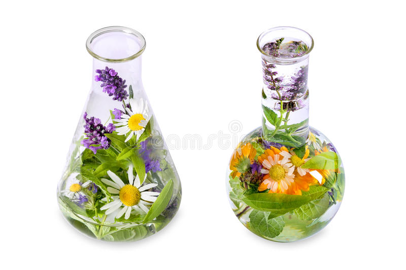 Homeopathy and cooking with herbs stock photos