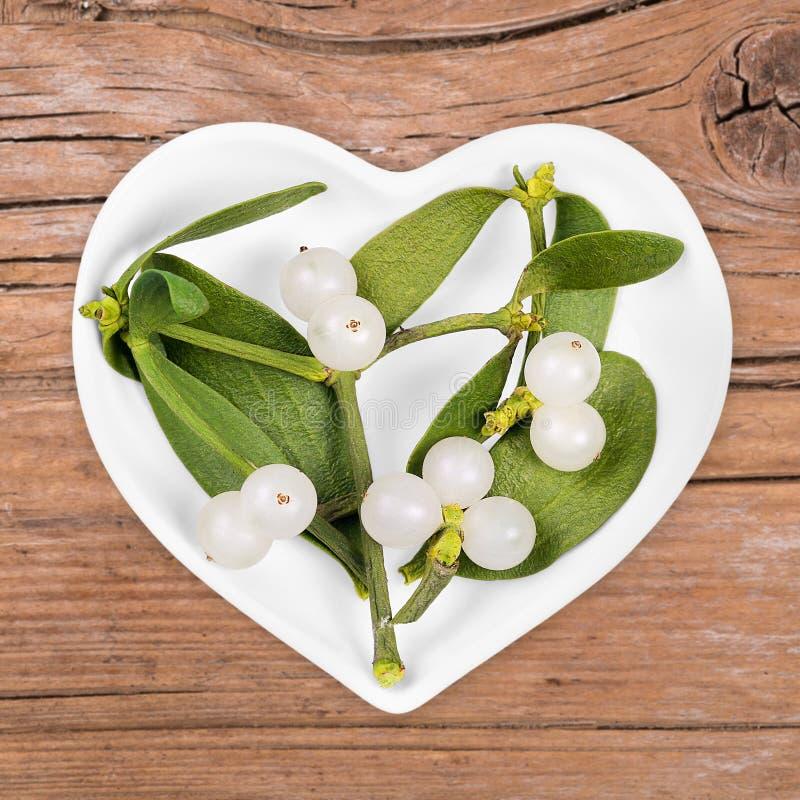 Homeopati och matlagning med mistel royaltyfria bilder