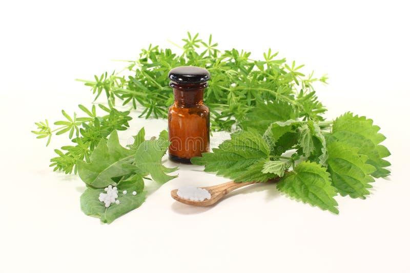 Homeopatia com frasco do apothecary imagens de stock