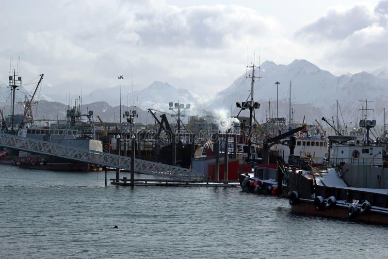 Homer boat harbor. Gray day at the boat harbor in Homer Alaska royalty free stock photo
