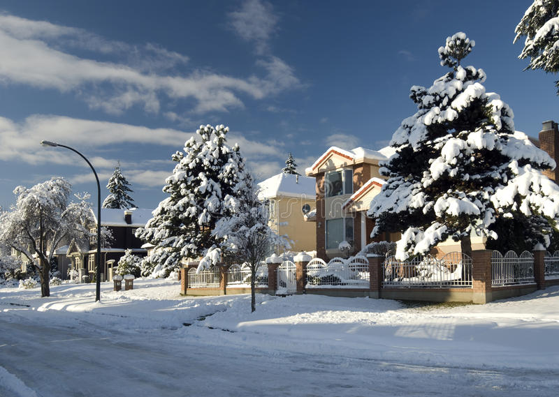 Download Homes in winter stock photo. Image of trees, winter, sunny - 20261398