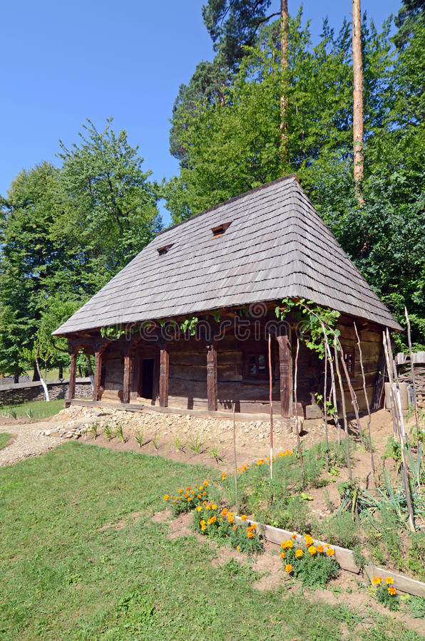 Homestead garden flower royalty free stock photo
