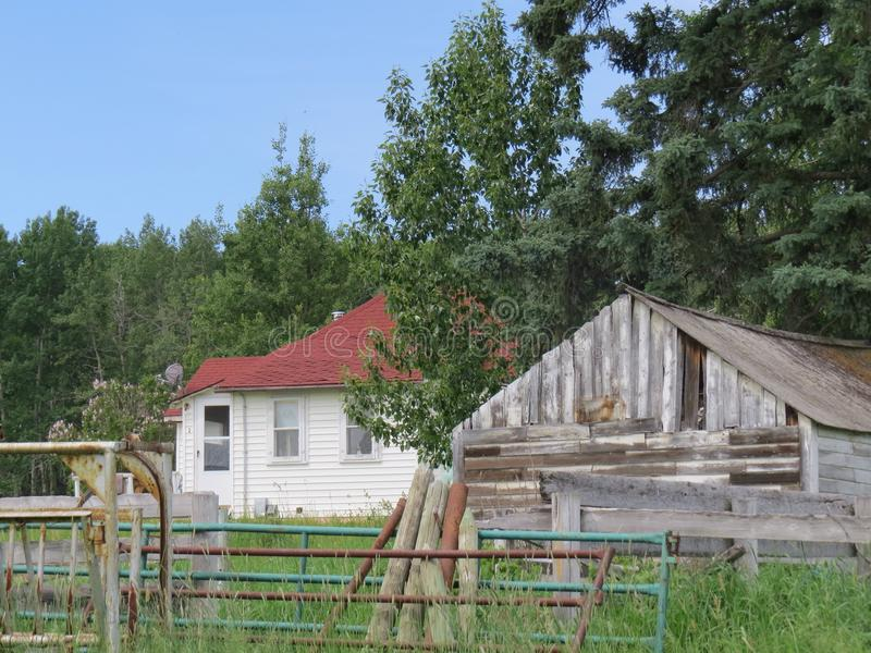 Homestead , Sundre AB royalty free stock images
