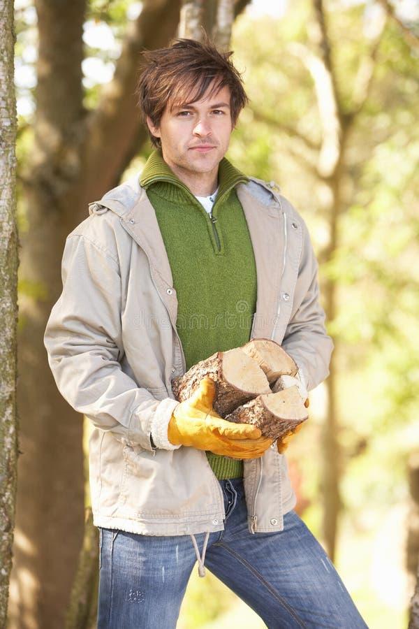 Homme à l'extérieur dans la régfion boisée d'automne recueillant des logarithmes naturels images libres de droits