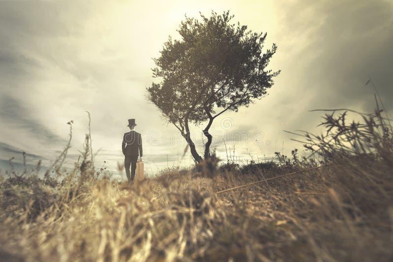 Homme élégant avec un tuba et une valise marchant dans un endroit sauvage et surréaliste image libre de droits