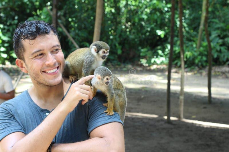 Homme établissant le contact avec les singes sauvages images stock