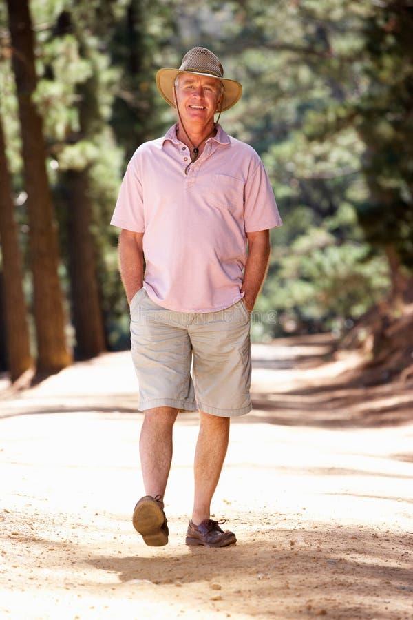 Homme aîné marchant dans le pays photo libre de droits