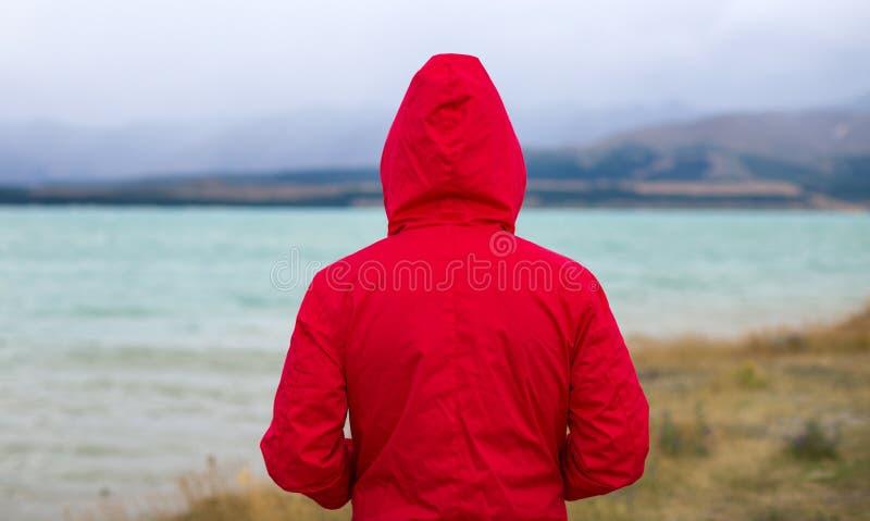 Homme appréciant la vue, Nouvelle-Zélande image stock