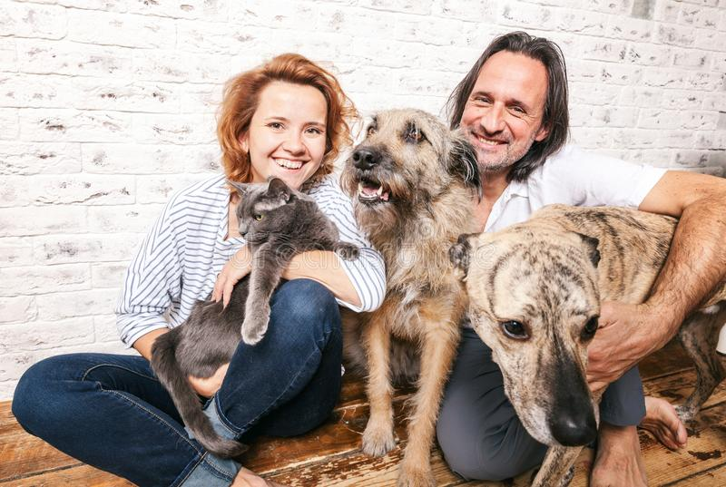 Homme attirant et sa jeune épouse avec des animaux familiers, deux chiens et un chat, photographie stock