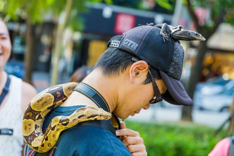 Homme avec des reptiles d'animal familier photo libre de droits