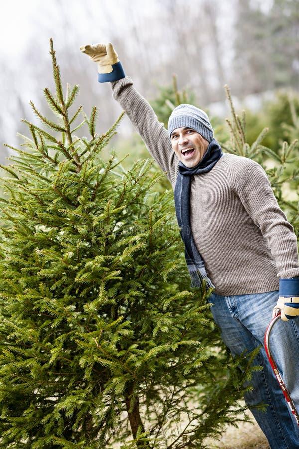 Homme avec l'arbre de Noël à une ferme photographie stock