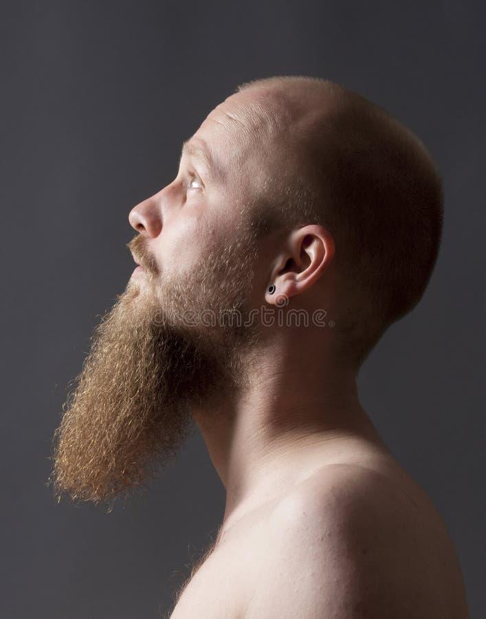 Homme avec la barbe de barbichette photo libre de droits