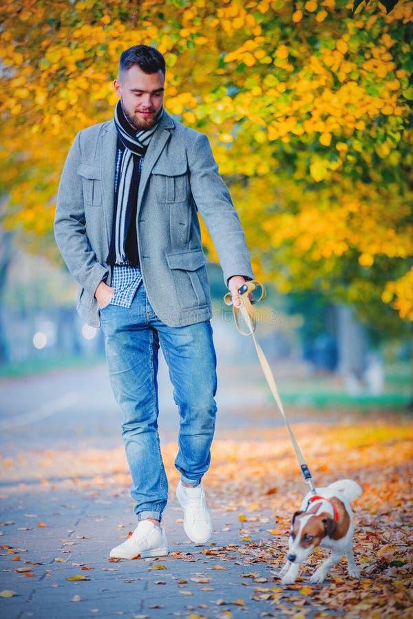 Homme avec le chien marchant à l'allée de saison d'automne photo stock
