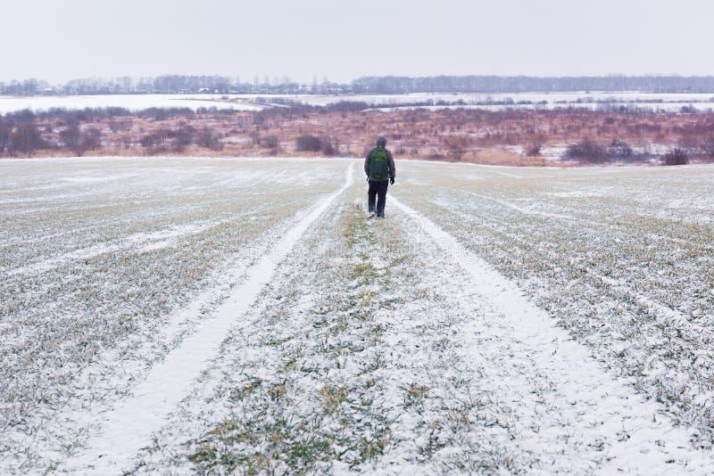 Homme avec le chien sur la route neigeuse images stock