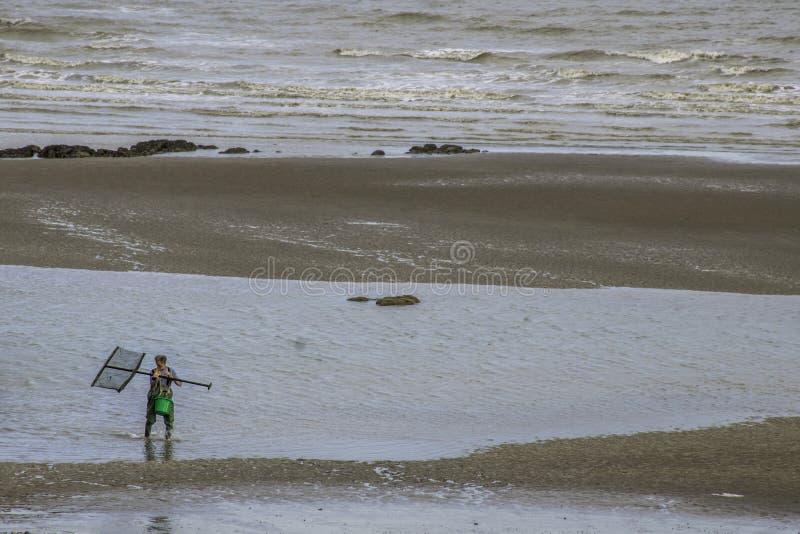 Homme avec le filet de crevette sur la plage à marée basse image stock