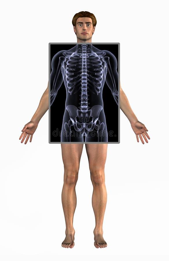 Homme avec le rayon X - avec le chemin de découpage illustration de vecteur