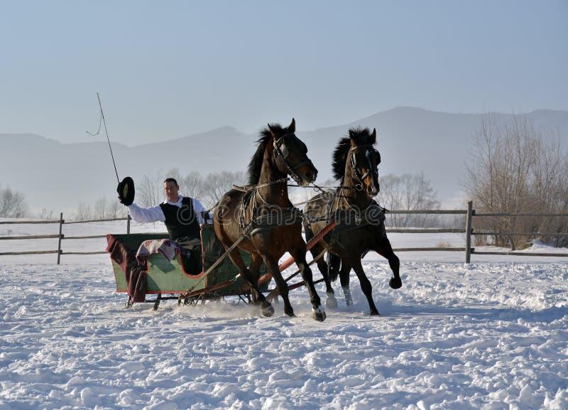 Homme avec le traîneau tiré par des chevaux photographie stock libre de droits