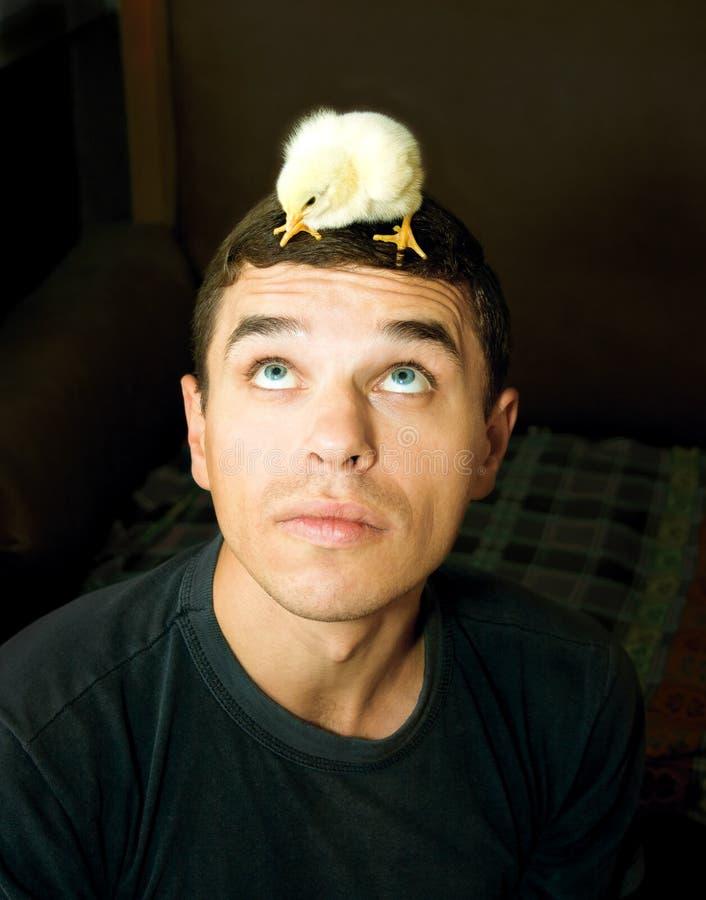 Homme avec un poulet sur sa tête photographie stock