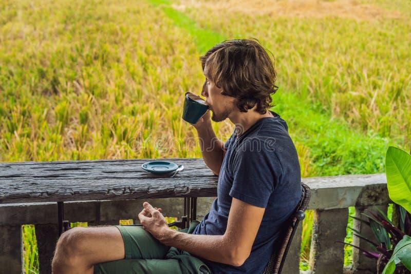 Homme avec une tasse de café sur la véranda de café près des terrasses de riz sur Bali, Indonésie image libre de droits