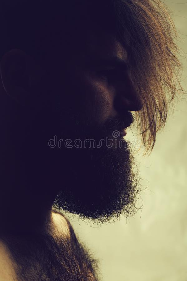 Homme barbu élégant photo stock