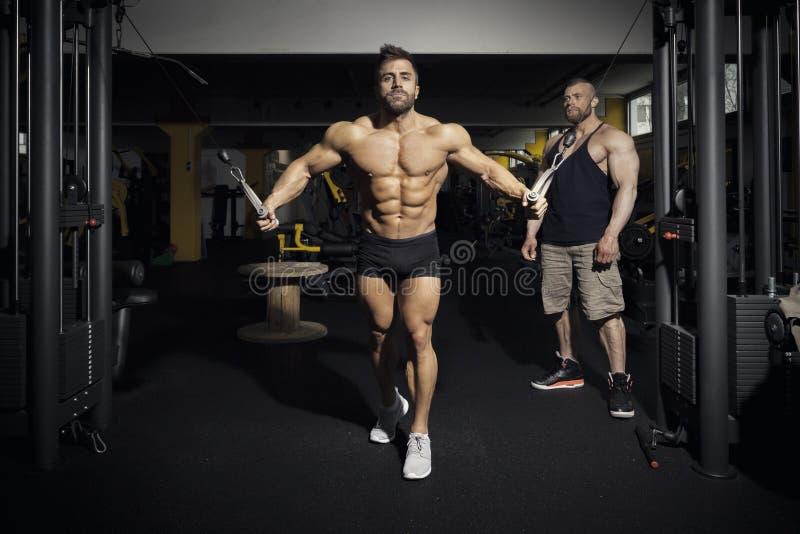 Homme barbu bel de bodybuilding photographie stock libre de droits