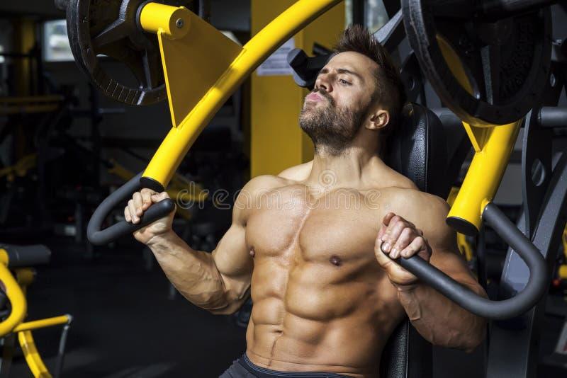 Homme barbu bel de bodybuilding images stock