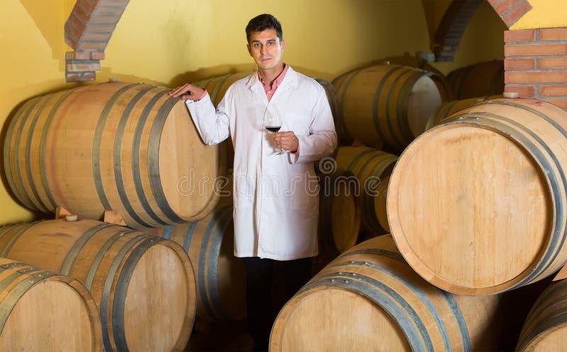 Homme bel vérifiant le processus vieillissant du vin rouge photos libres de droits