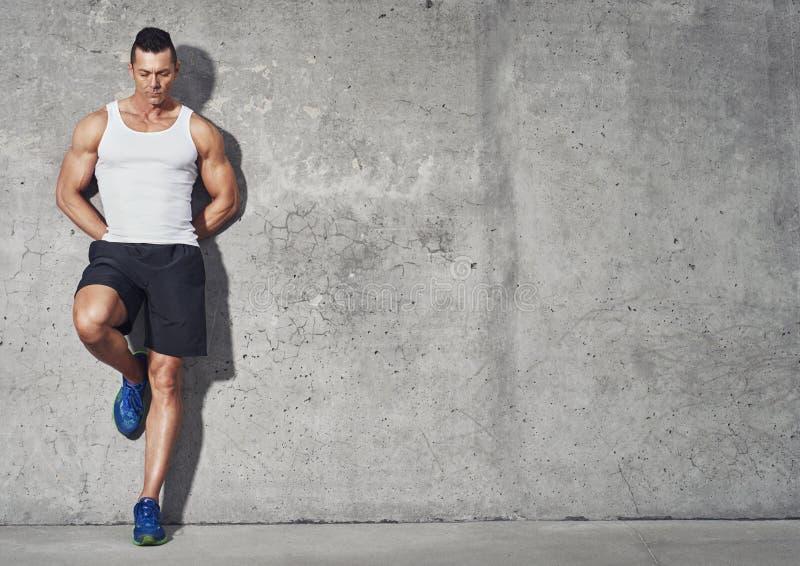 Homme convenable et en bonne santé, portrait musculaire de construction images libres de droits