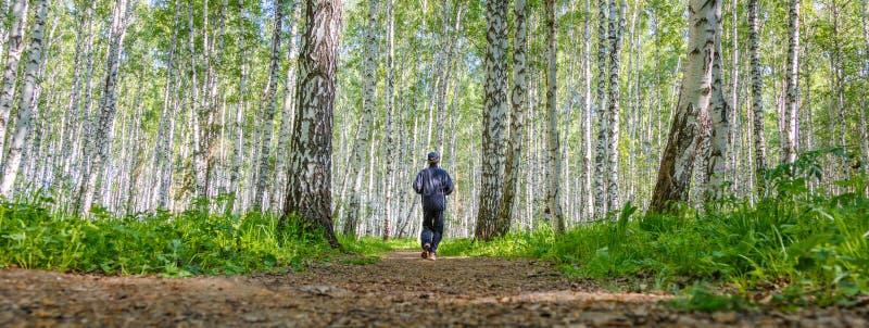 Download Homme Courant Dans Le Verger De Bouleau Image stock - Image du footpath, route: 76076145
